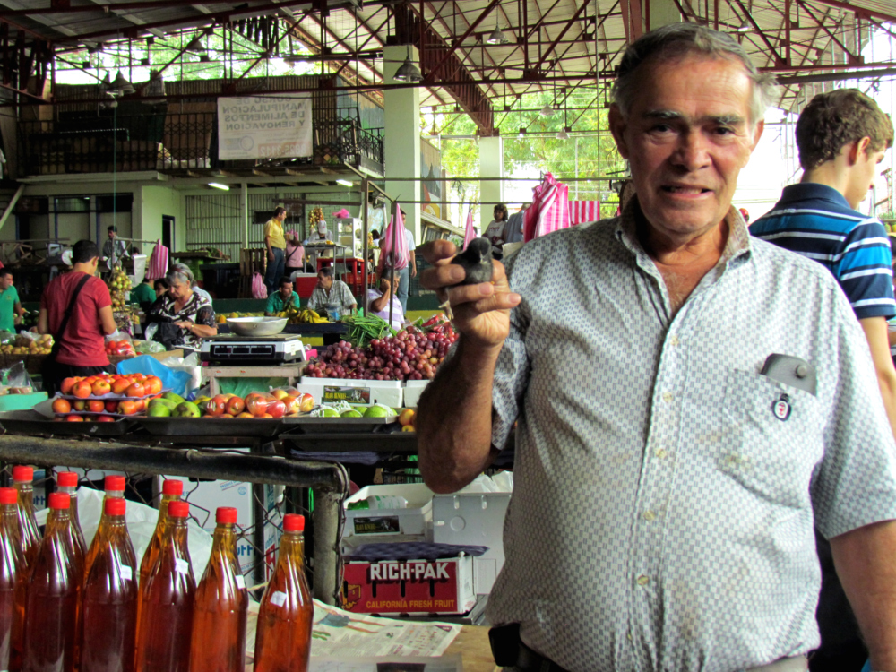 Ruperto travels approximately 3 hours in a bus every Thursday to sell in the Ciudad Quesada Market.